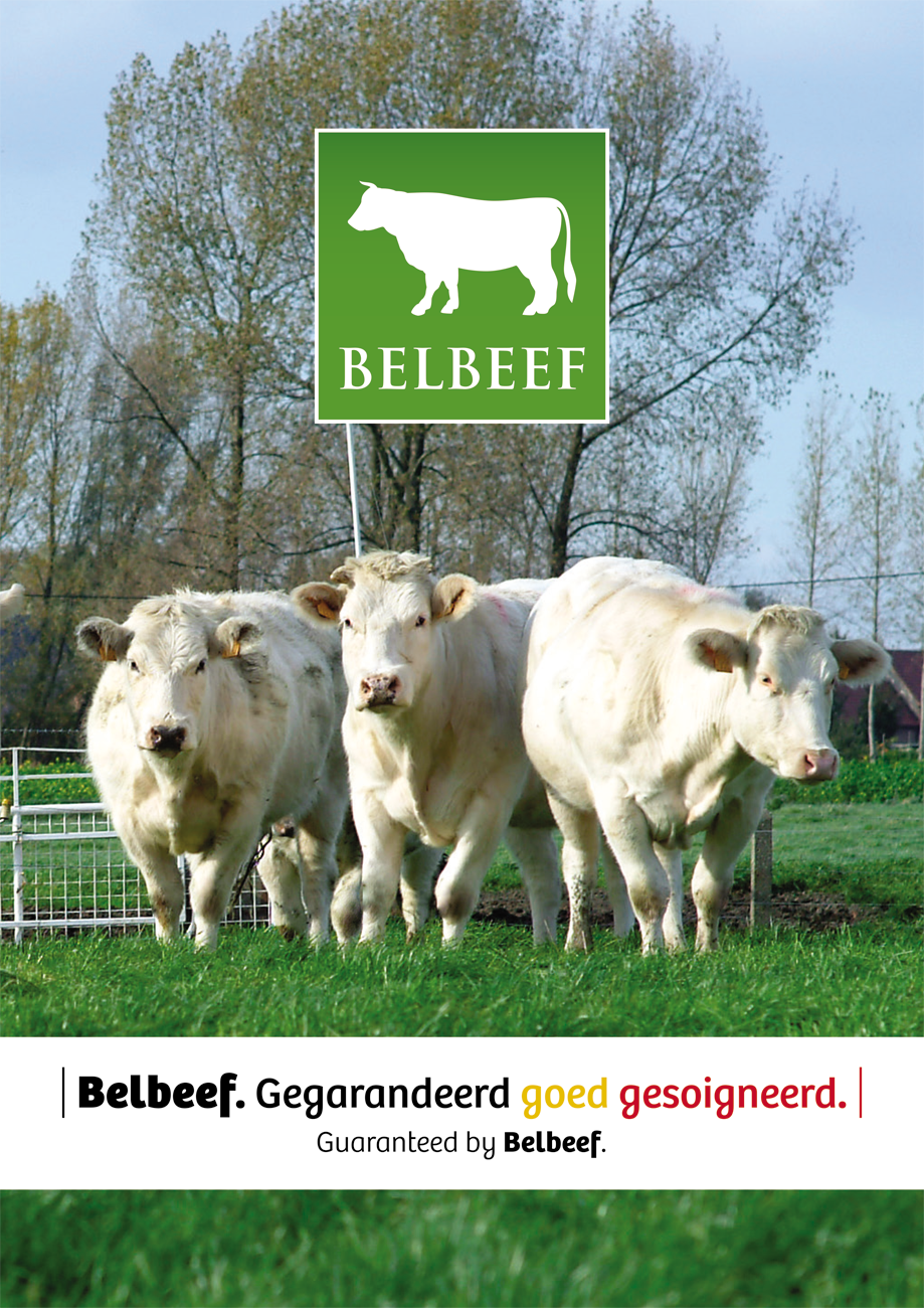 Stalbord Belbeef